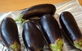 vegetarianskoe ragu baklazhany